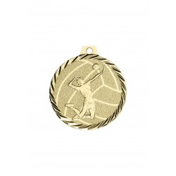 médaille nz24d volley